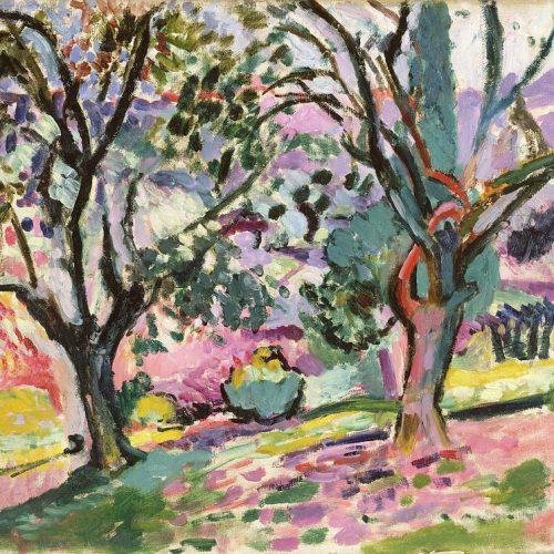 olive-trees-at-collioure-henri-matisse